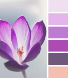 colori per bagno radiant orchid inspirazione