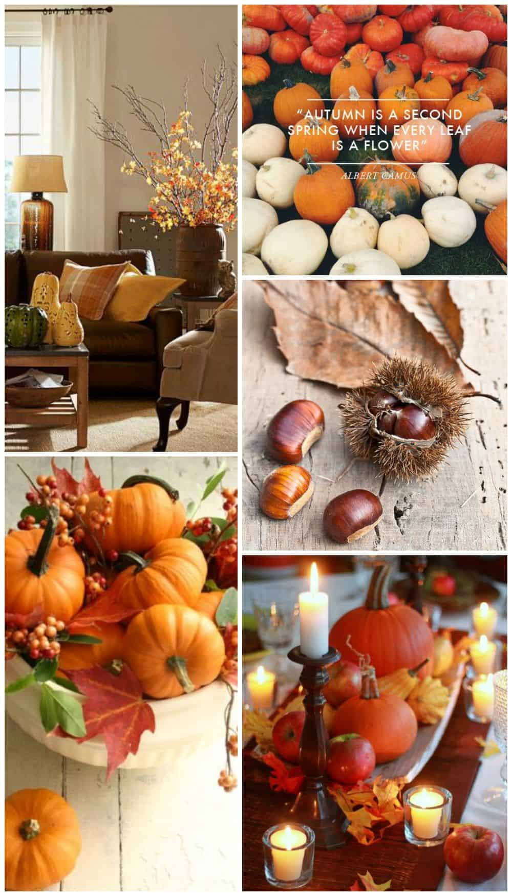 idee arredo autunno halloween night fall decoration home