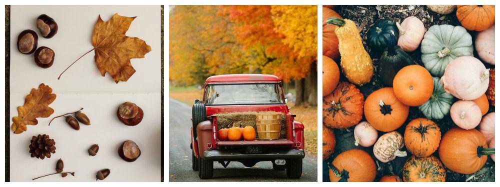 ottobre autunno home decoro idee arredo per la casa