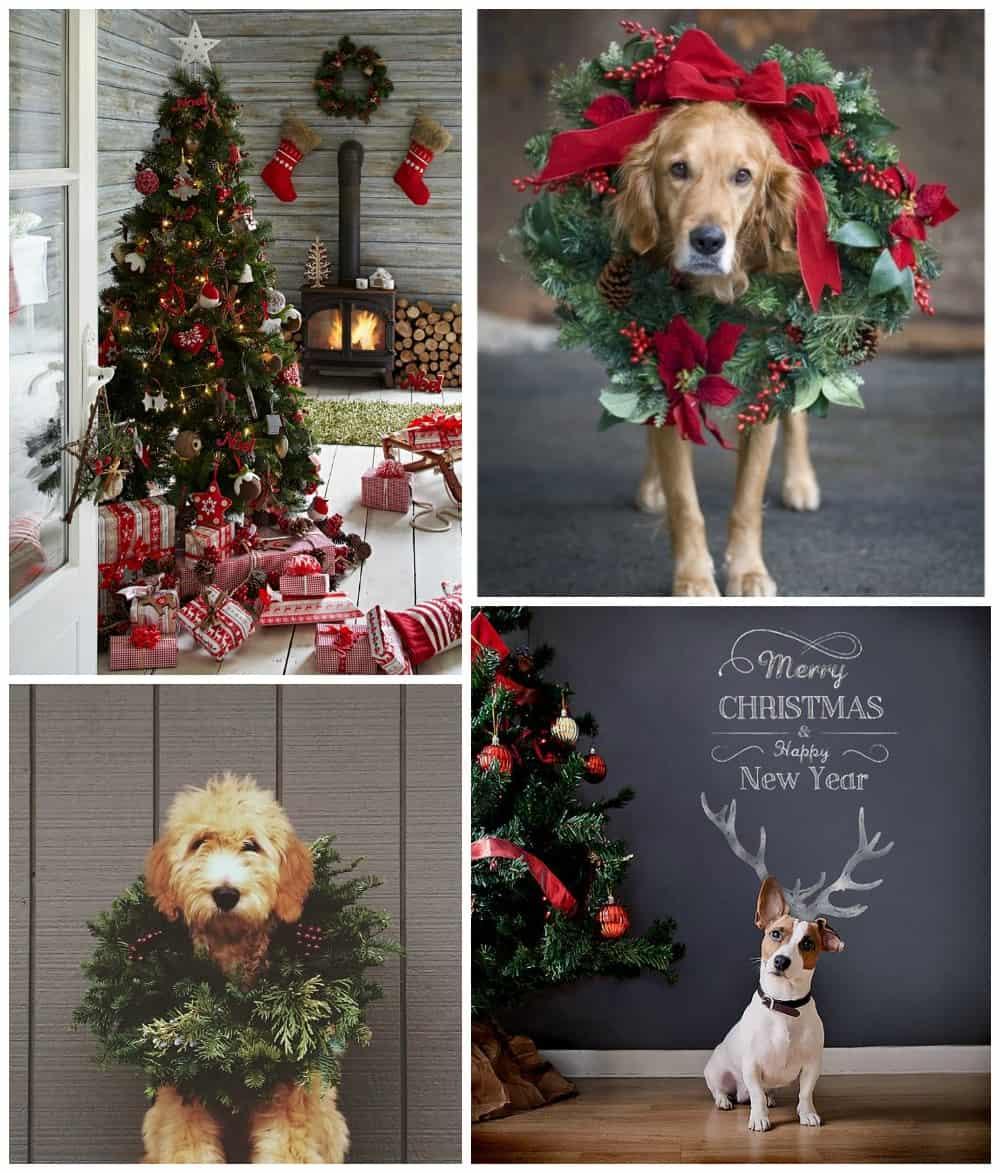 natale in famiglia stile tradizionale addobbi e arredamento natalizio