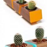 cactus vasi fai da te in legno decorazioni casa