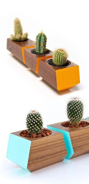 CACTUS DIY: Vasetti di legno per piantine grasse con video tutorial!