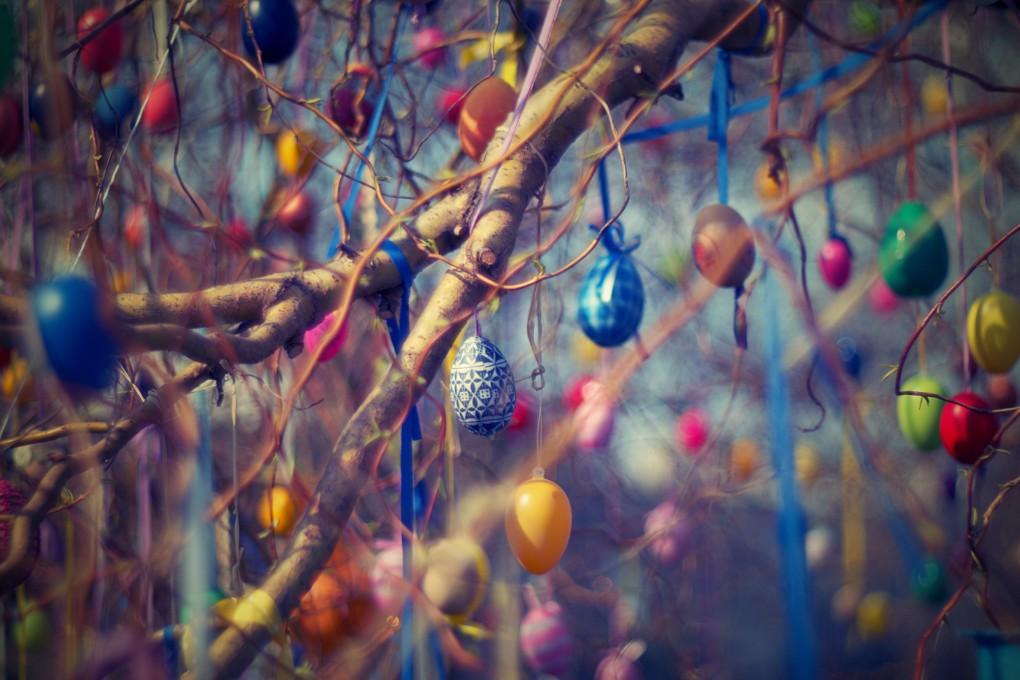 Uova colorate appese a rami di albero