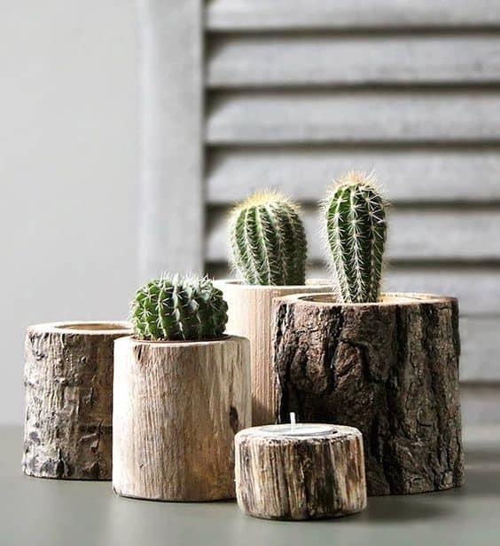 diy cactus mania fai da te vasetti di legno per piante grasse tuttoferramenta