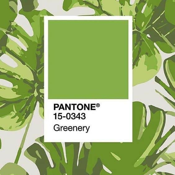 Tuttoferramenta è JUNGLE con il PANTONE GREENERY!